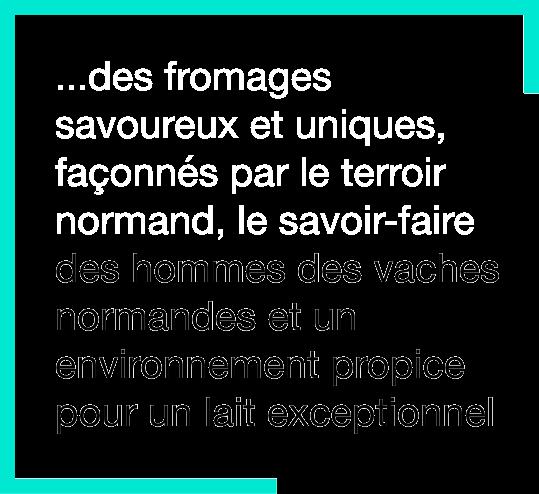Marque AOP Normandie